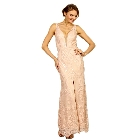 Soieblu Pale Pink and Nude Lace Yoke & Mesh Sleeveless Embroidery Detail Maxi Dress, Small