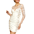 Soieblu Ivory Long Sleve Lace Bodycon Mini Short Dress with Gold Embroideries, Large