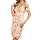 Soieblu Blush Lace Yoke & Mesh off the Shoulder Embroidery Bodycon Dress, Medium